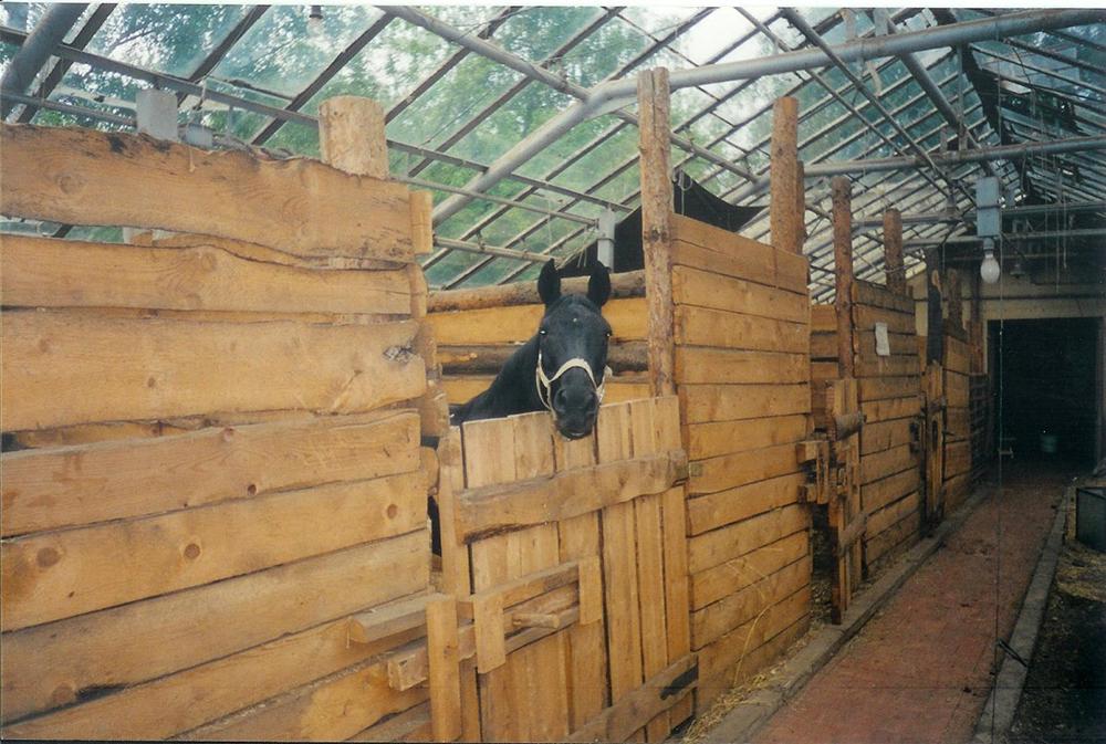equestrian_club